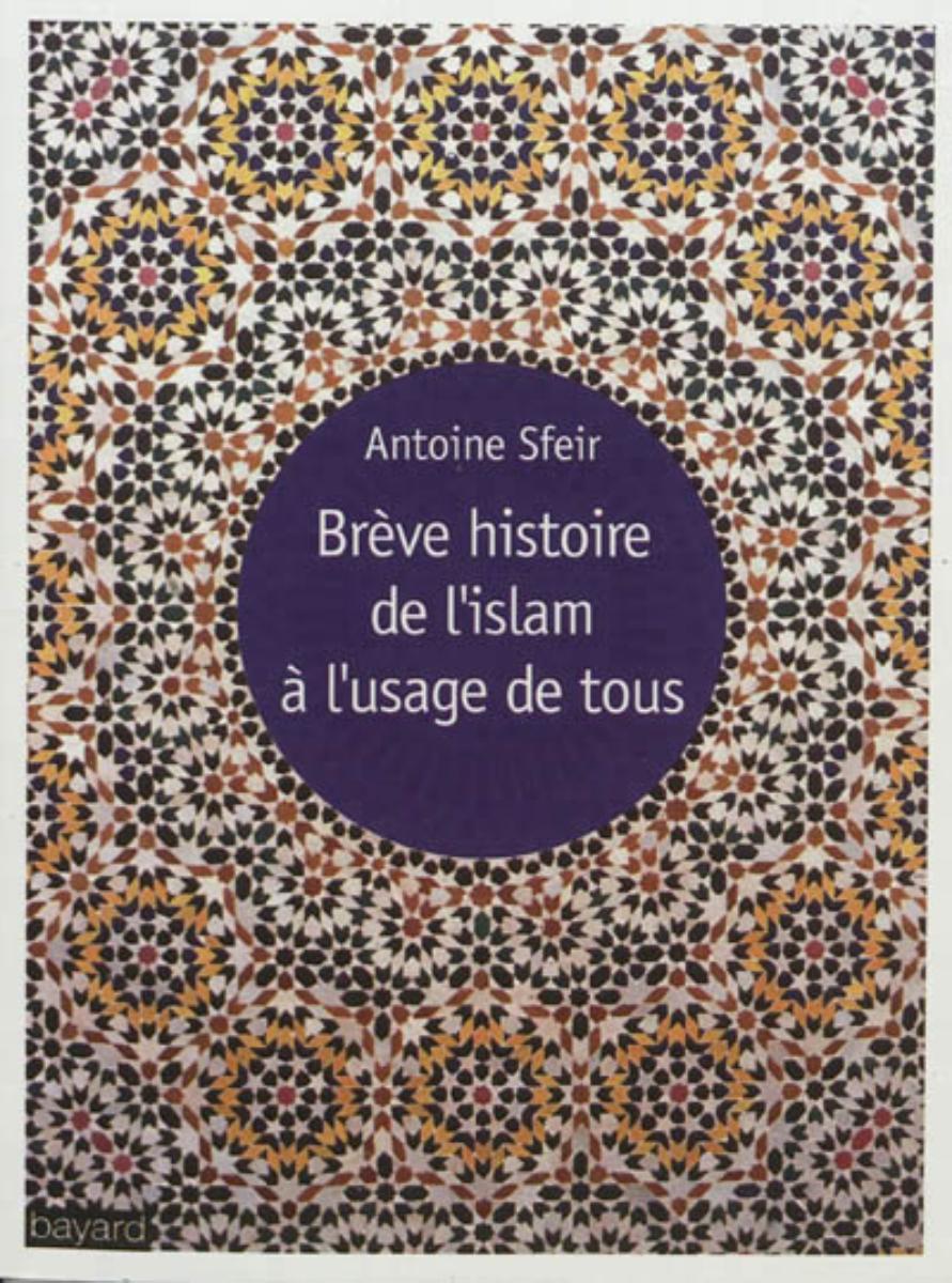 Couverture de «BRÈVE HISTOIRE DE L'ISLAM À L'USAGE DE TOUS»