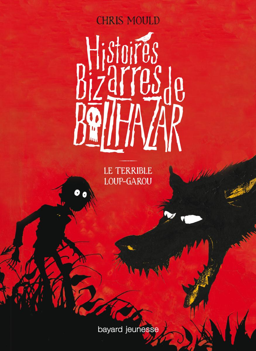 Couverture de « Le terrible loup-garou »