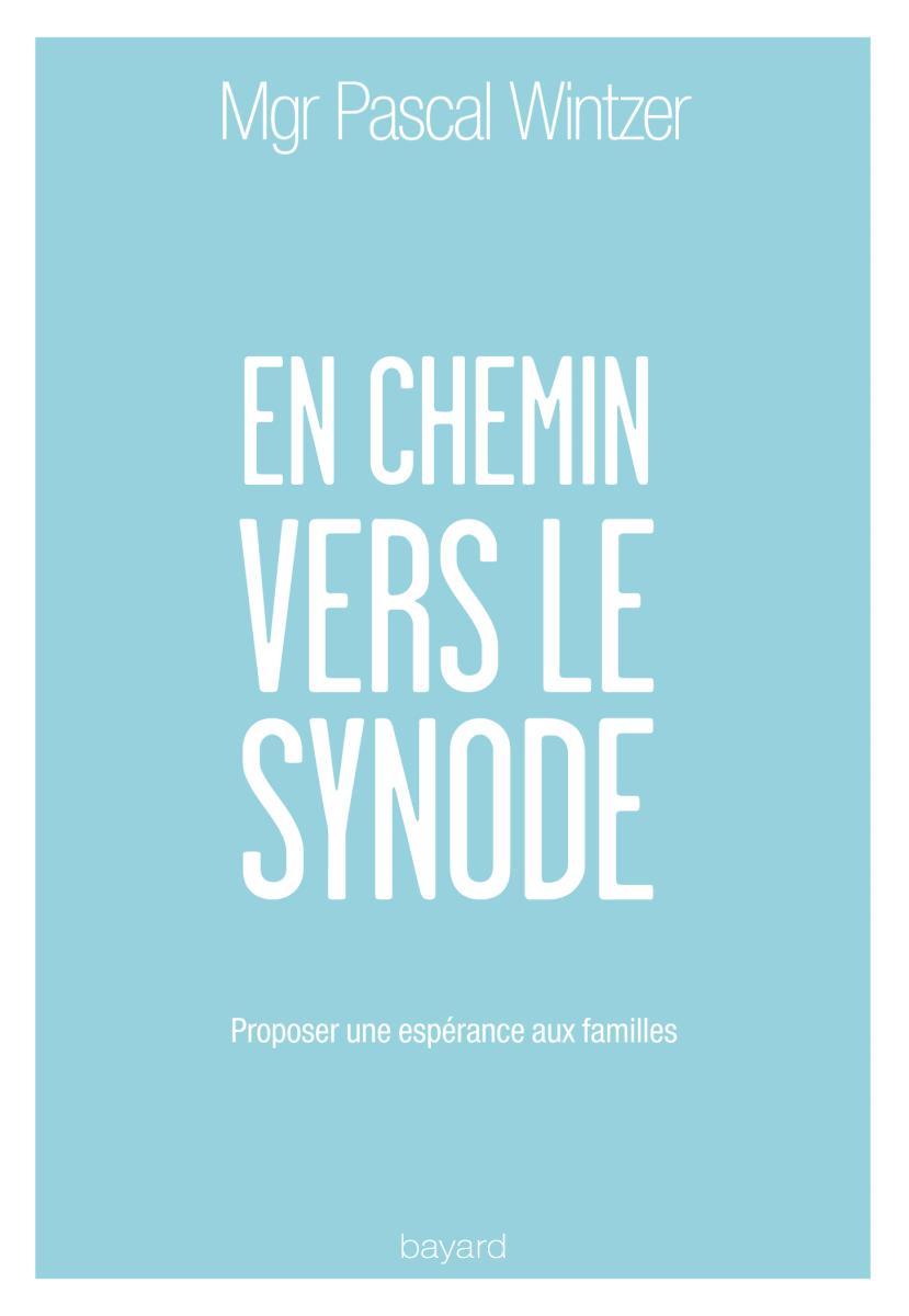 Couverture de «EN CHEMIN VERS LE SYNODE»